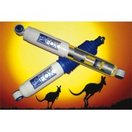 Assetto +5 cm Desert Fox TERRANO 2